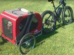 Hundefahrradanhänger E-Bike